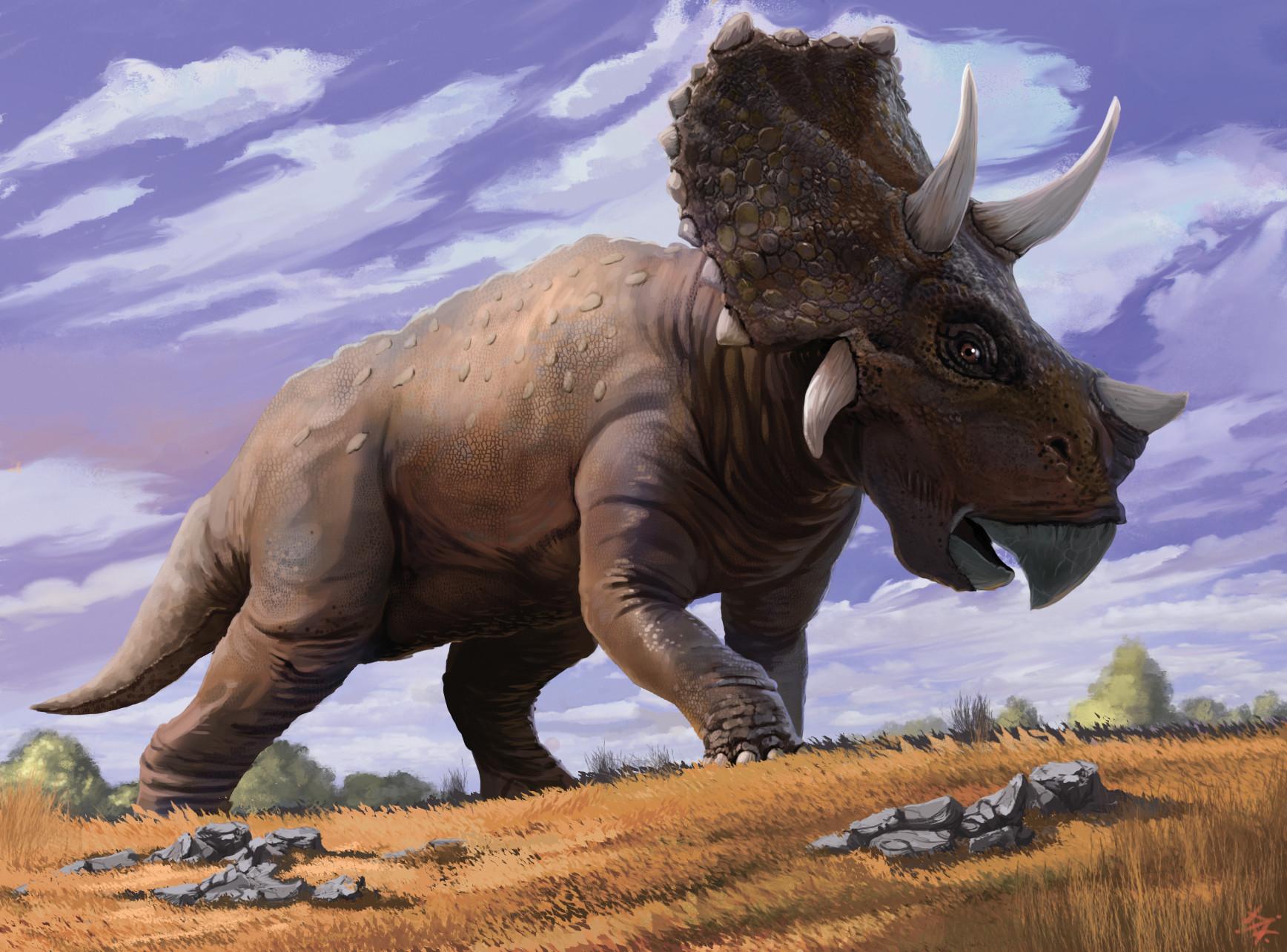 Картинки динозавр трицератопс