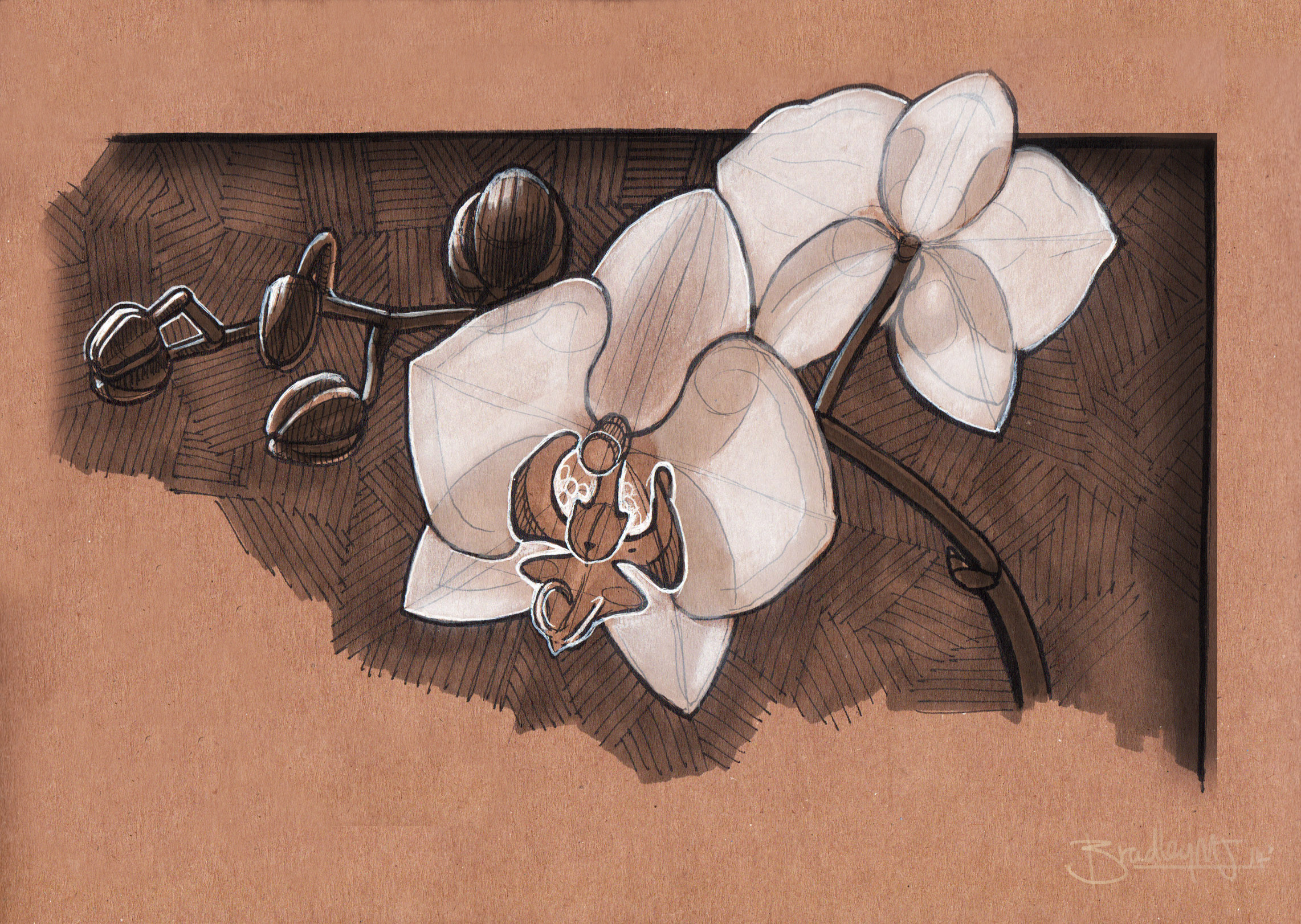 orchid studies from life, traditional mixed media