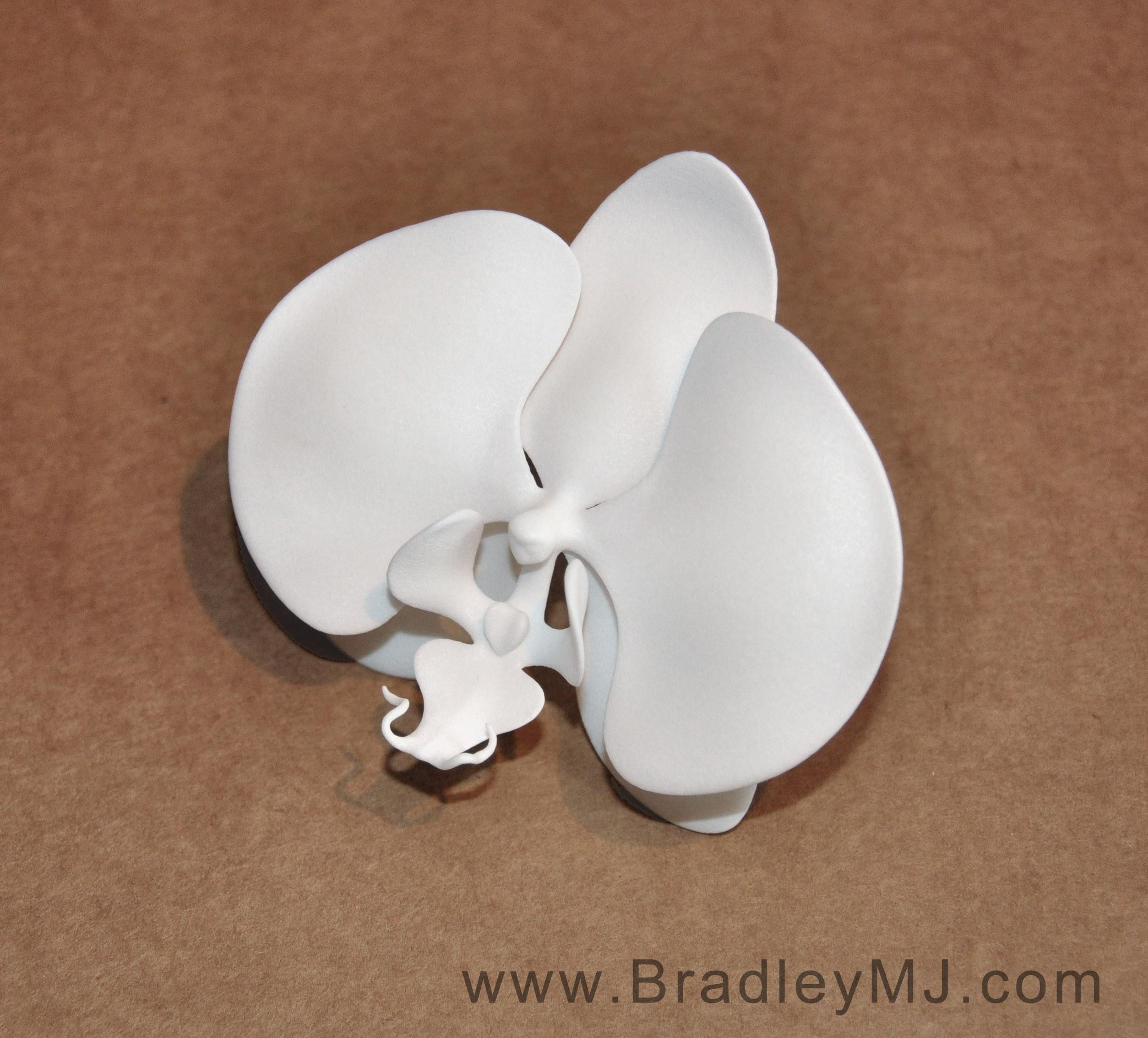 3D print of orchid sculpt