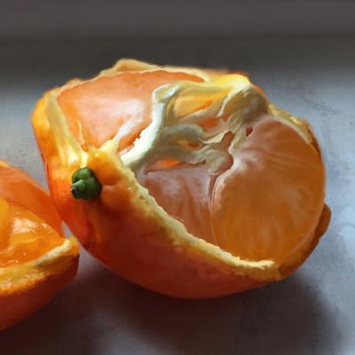 Guenter zimmermann tangerine halved contrast