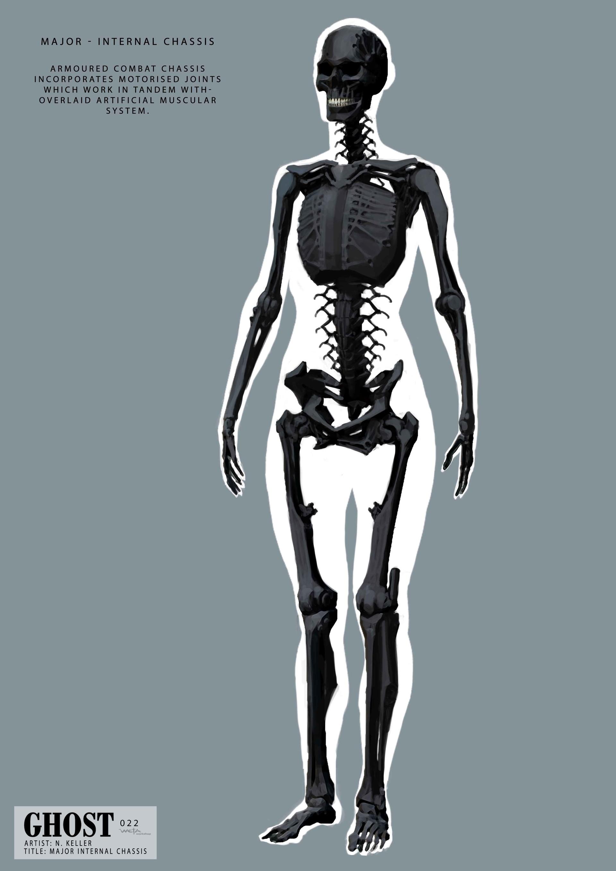 Major Skeleton - Artist: Nick Keller