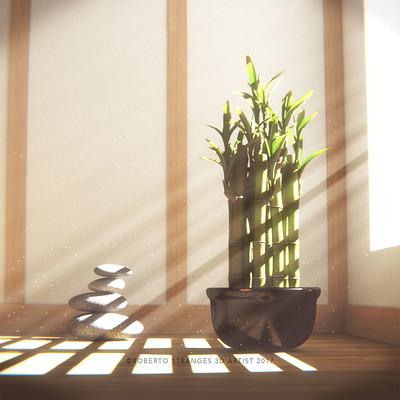 Roberto stranges bamboo dream