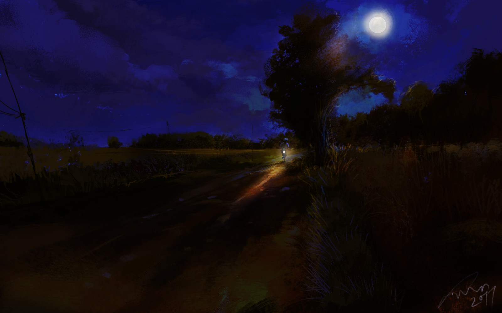 village path night