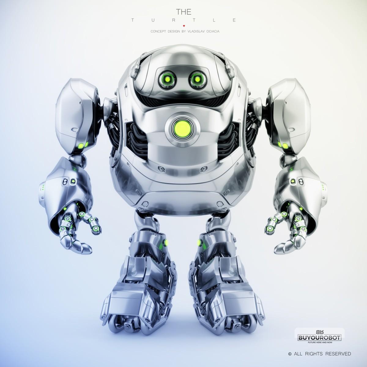 Vladislav ociacia cyber turtle robot 6