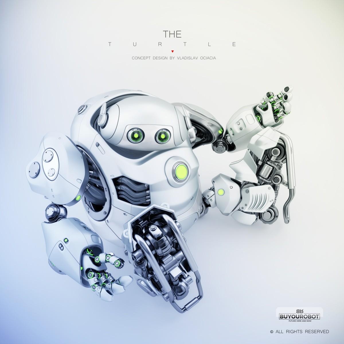 Vladislav ociacia cyber turtle robot 7