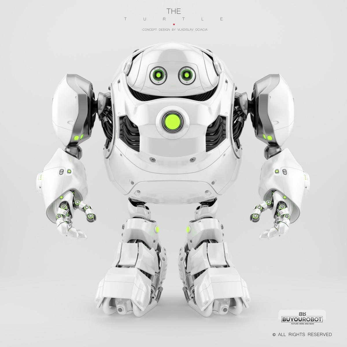 Vladislav ociacia cyber turtle robot 12