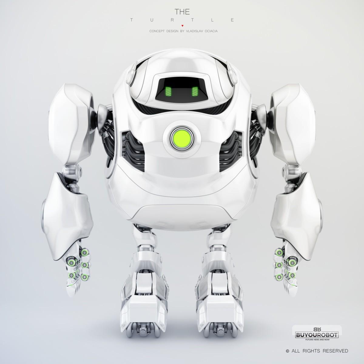 Vladislav ociacia cyber turtle robot 8