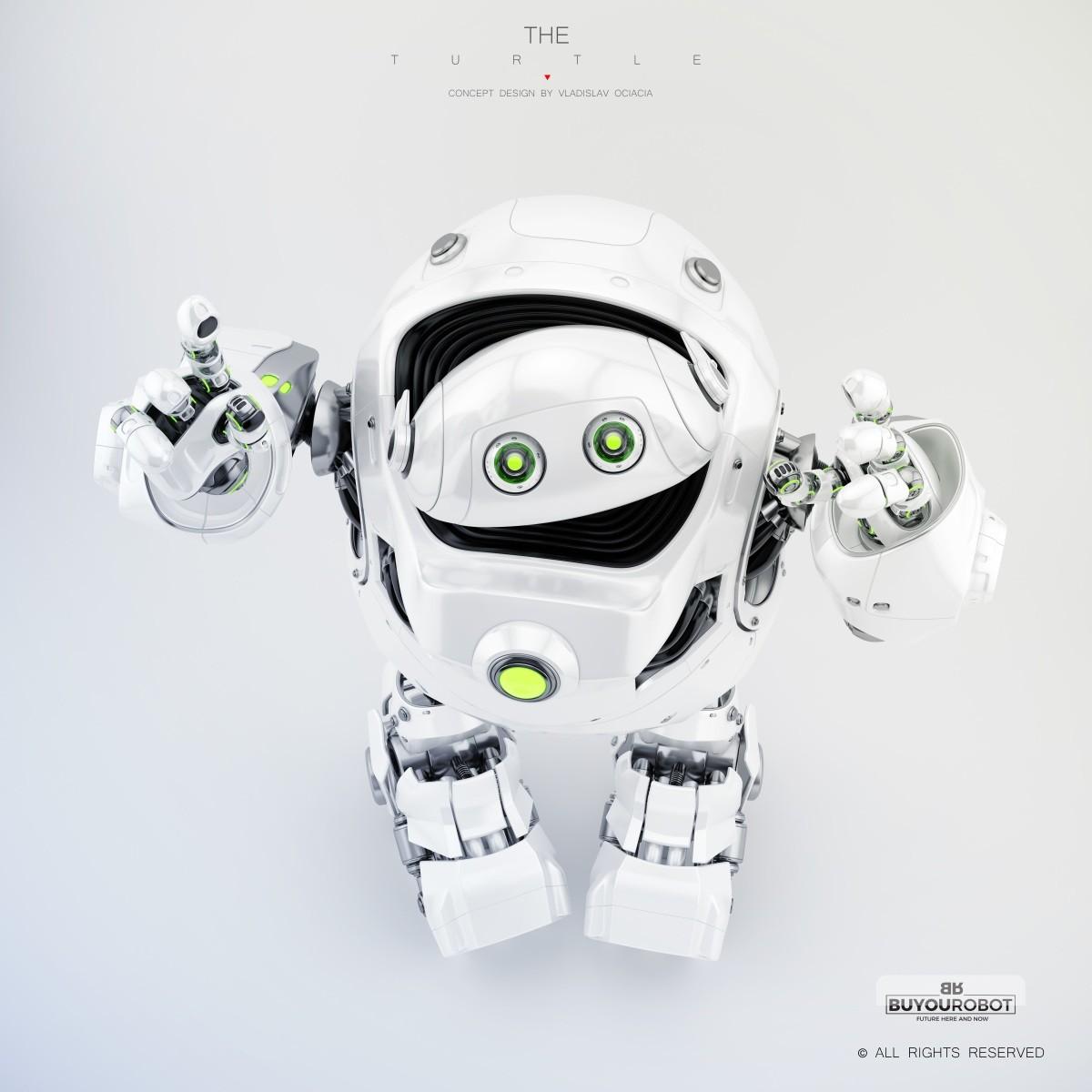 Vladislav ociacia cyber turtle robot 14