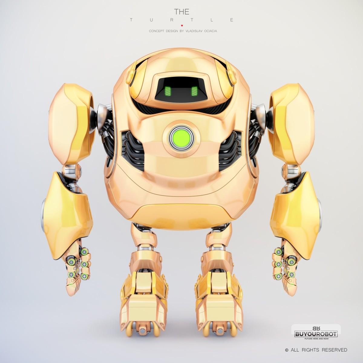 Vladislav ociacia cyber turtle robot 10