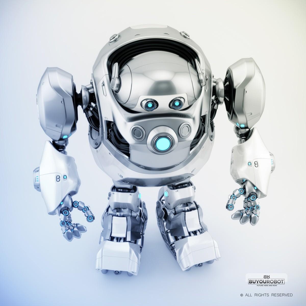 Vladislav ociacia cyber turtle robot 5