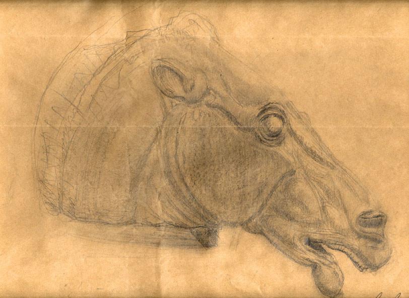 Luka trkanjec horsehex