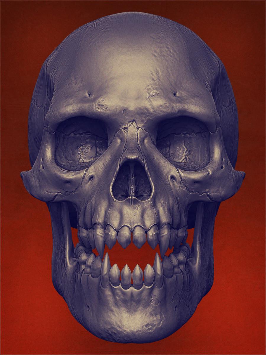 Mashru mishu skull r1