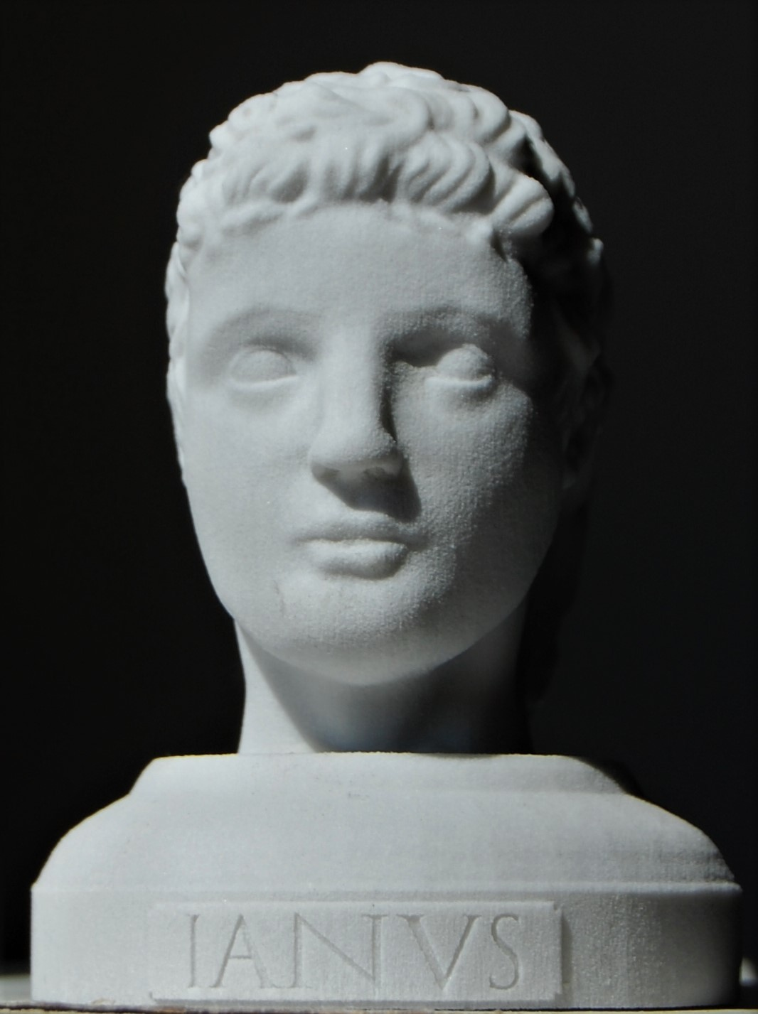 Janus the young (3d printed)