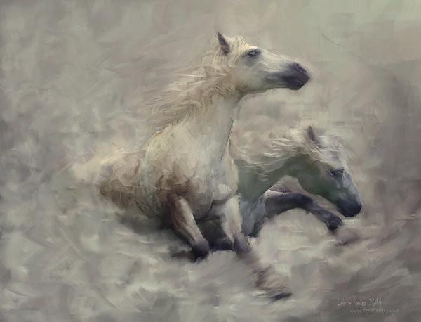 L e n t e s c u r a cavallo della morte