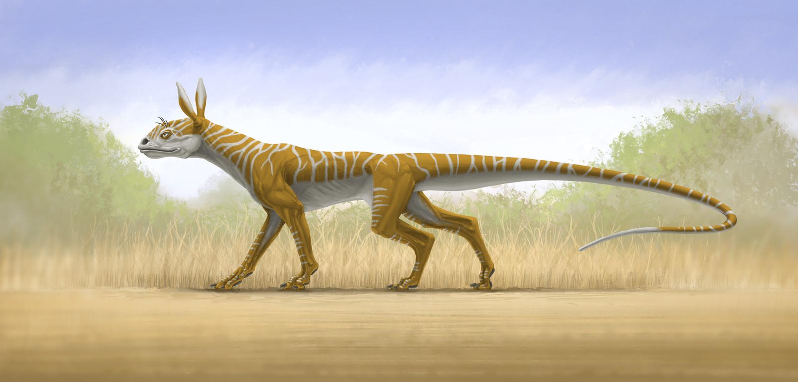 Fantastical Tetrapod Anatomical Study