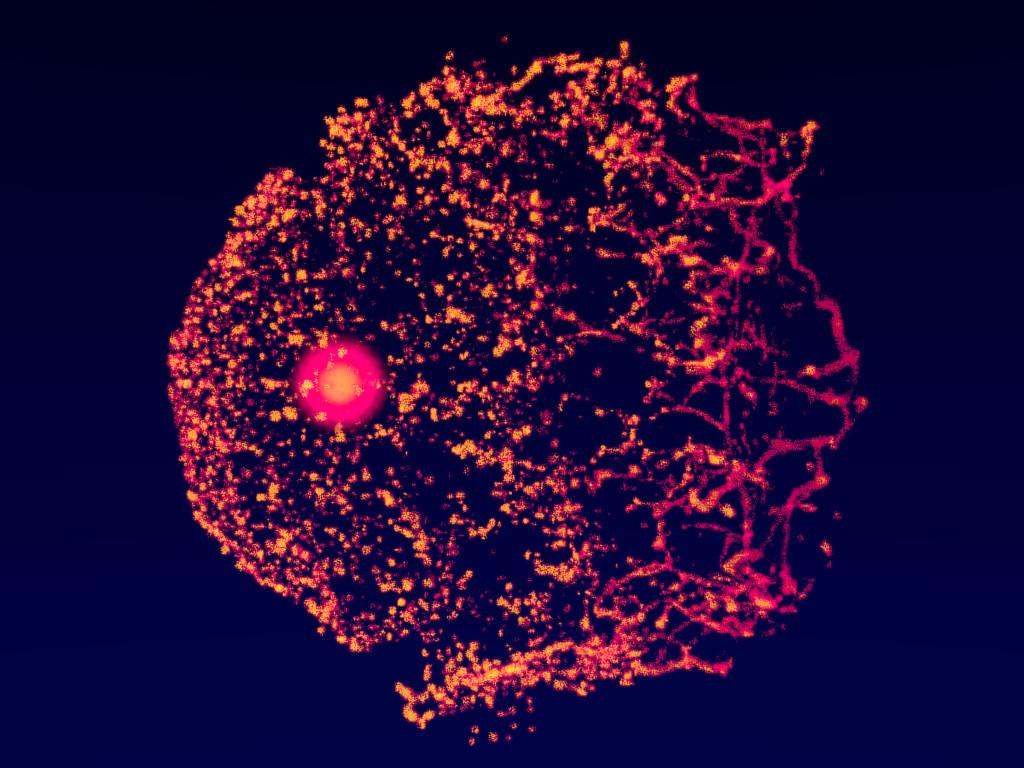 Matias garate stellarwinds image