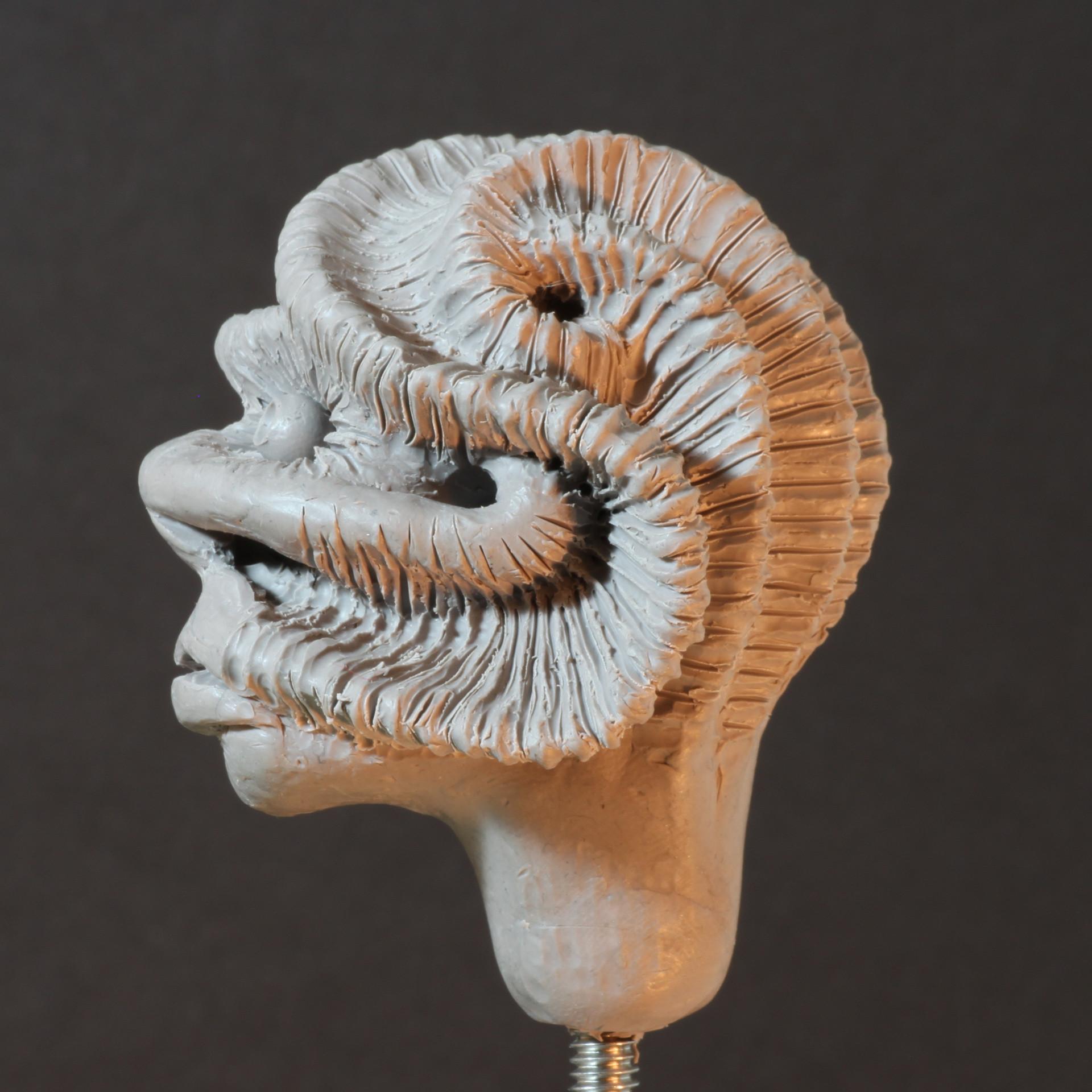 Rob mcdaniel 3dclay spiralshell side