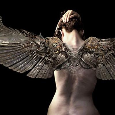 Amro attia angel