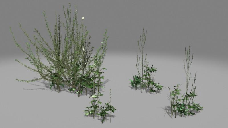Jeremy h brown weeds render 01