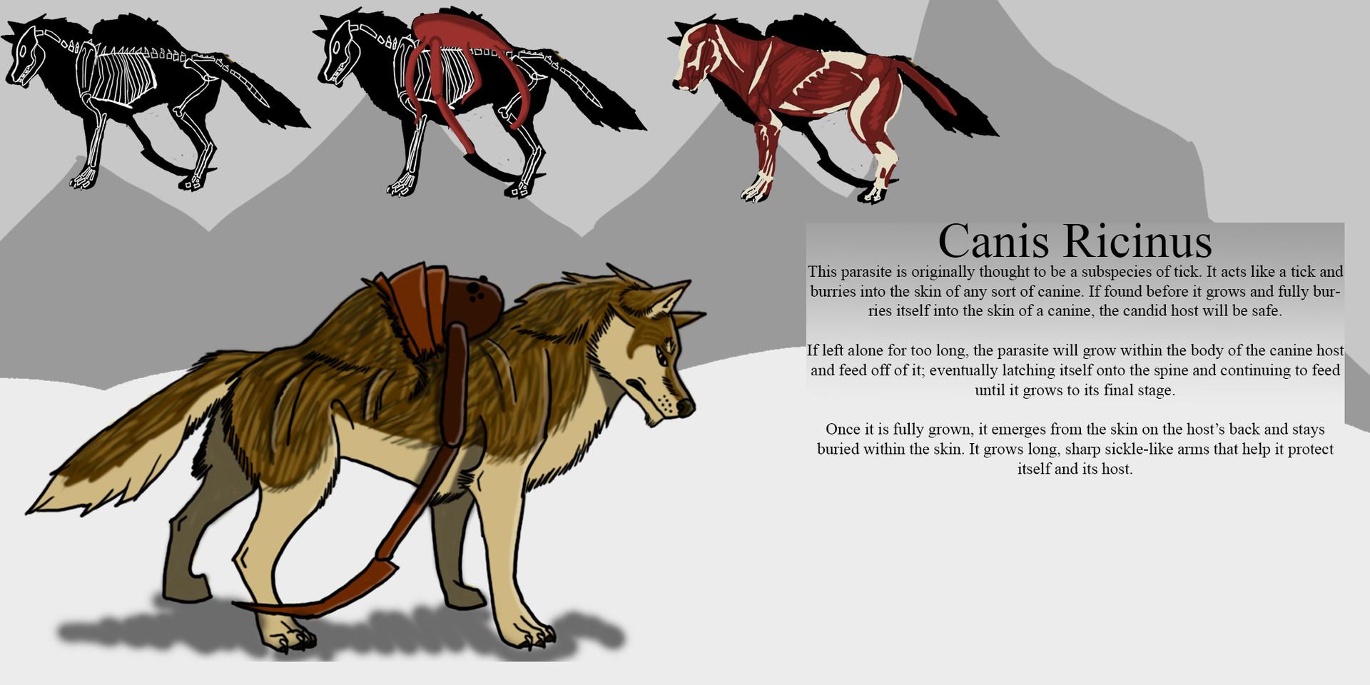 ArtStation - Canis Ricinus, Aliya Jenkins