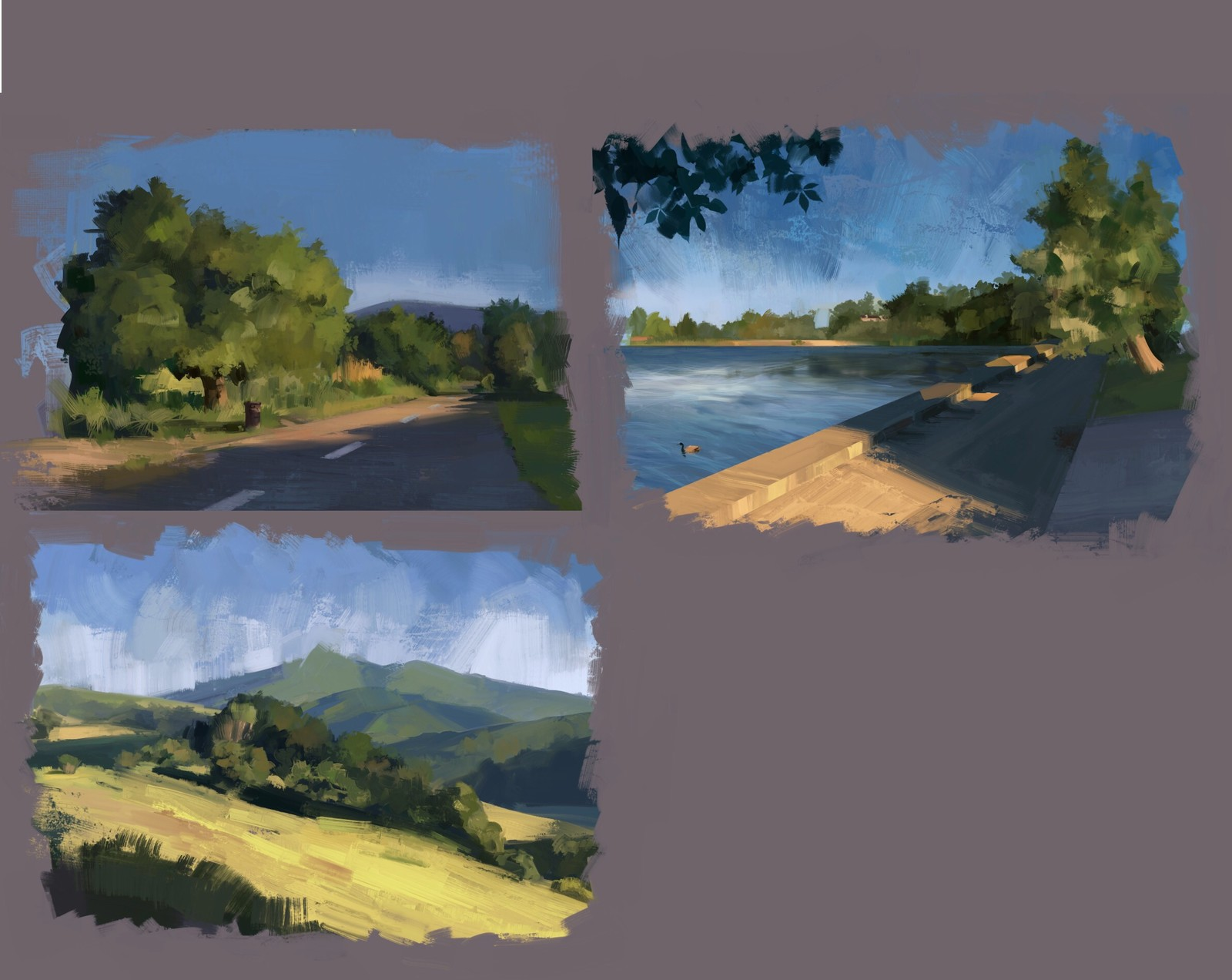 Landscape sketches in Marin county