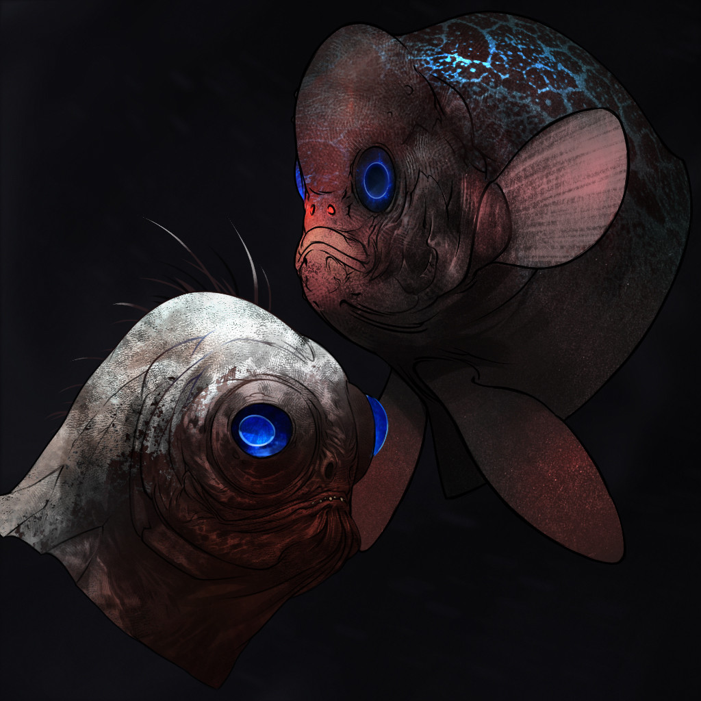 Dusko bjeljac fishface color