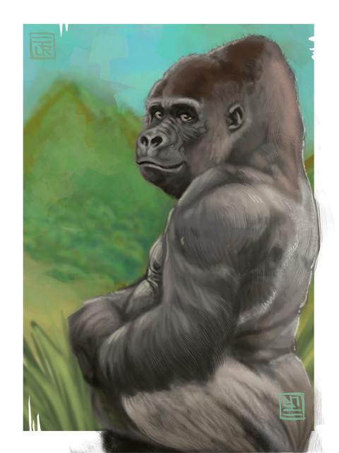 Jorge dias gorilla small
