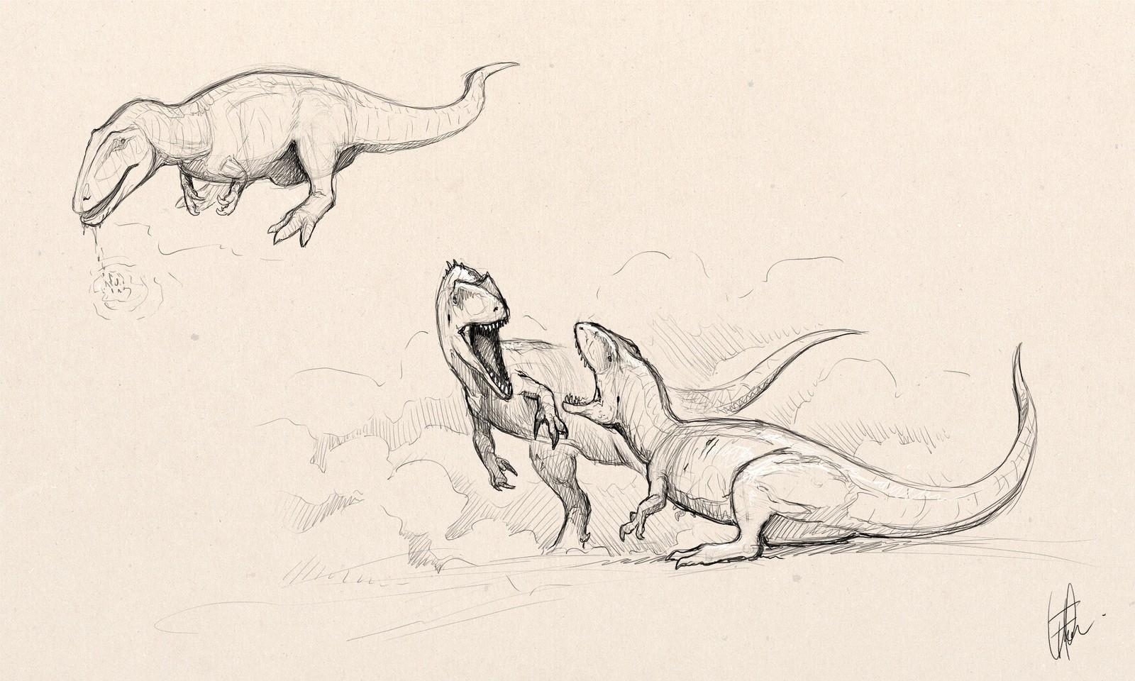 Carcharodontosaurus studies