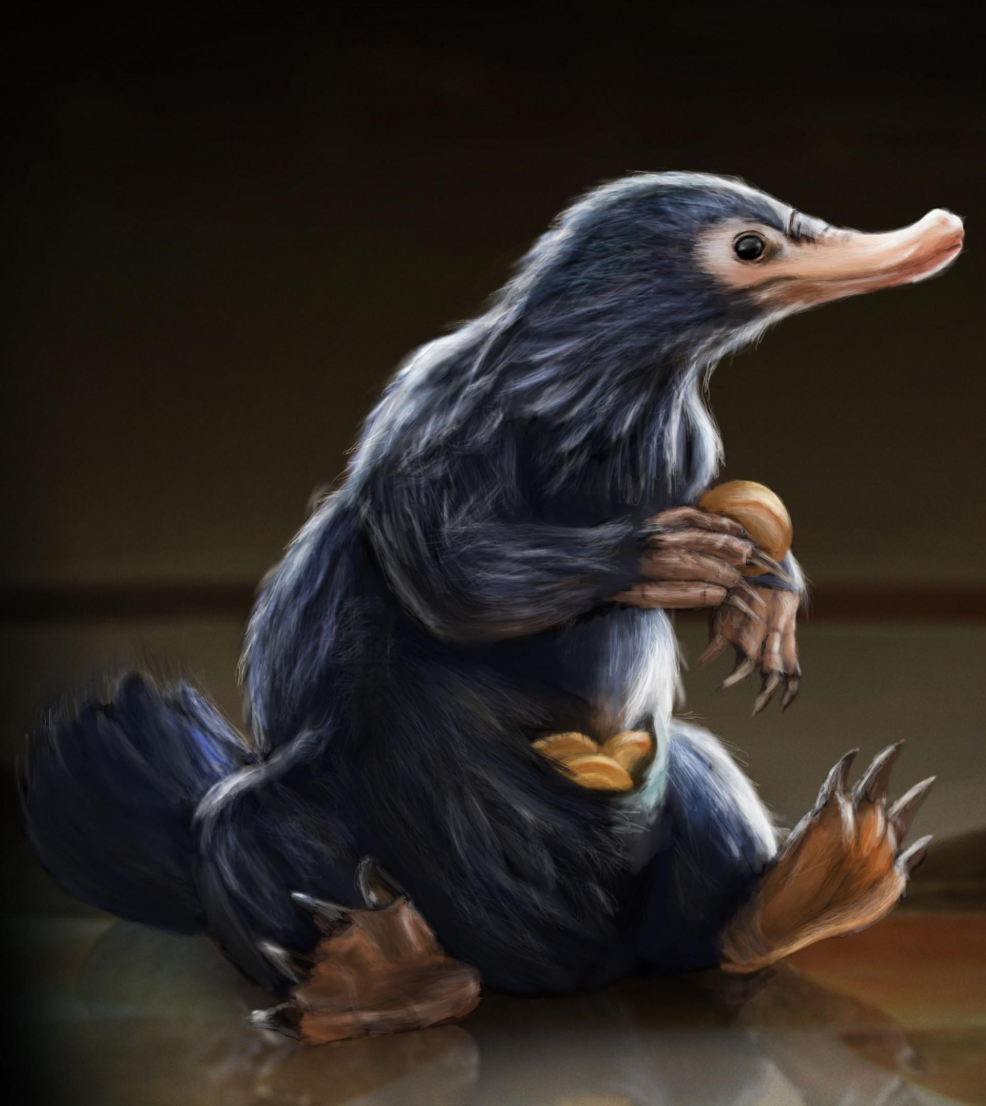 Les Animaux Fantastiques Animaux Niffleur Calamuchitatravel