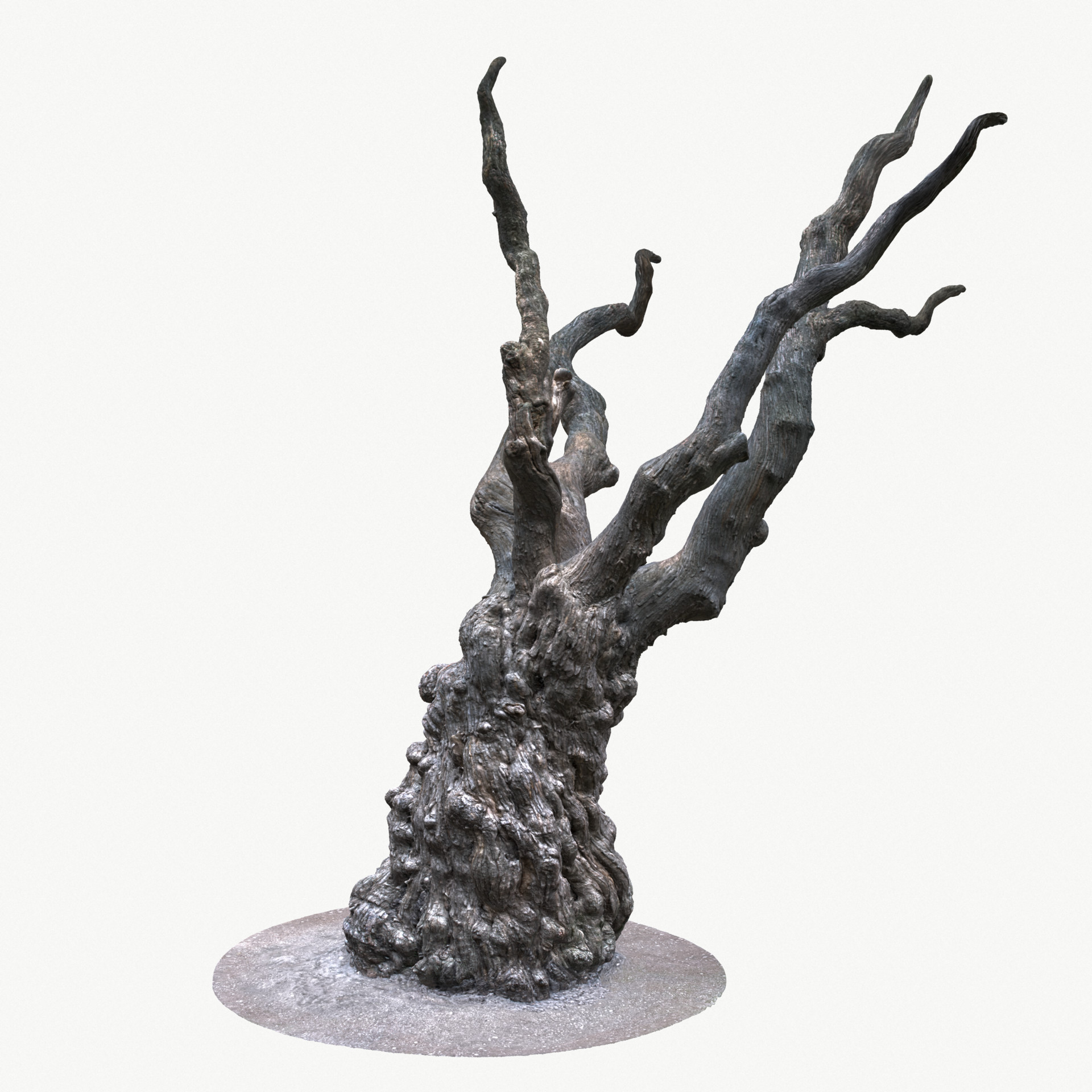 K o r e y b a · - Game Ready Tree Trunk Real-time 3D Model
