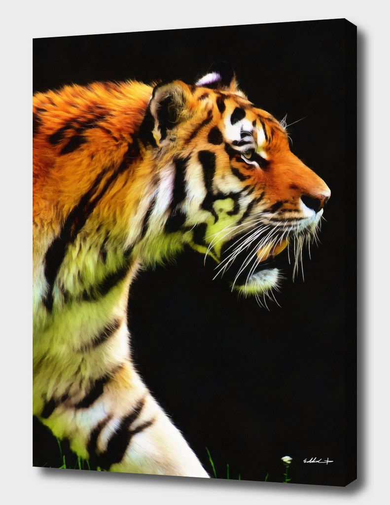 Eddie christian ed tiger canvas curioos