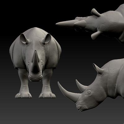 Andrew grant anm 313 13 2 grant andrew rhino