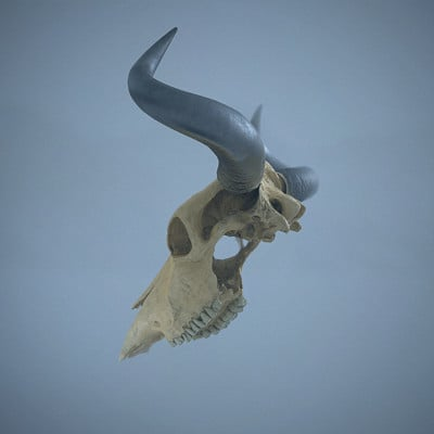 Lee williamson cow skull cold fog