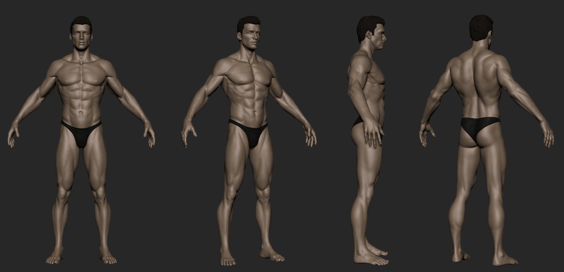 Tushank k jaiswal anatomy study male 2