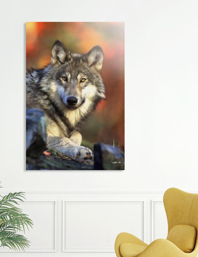 Eddie christian autumnwolf curioos 004