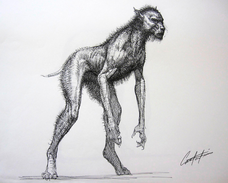 werewolf creature design rough sketch