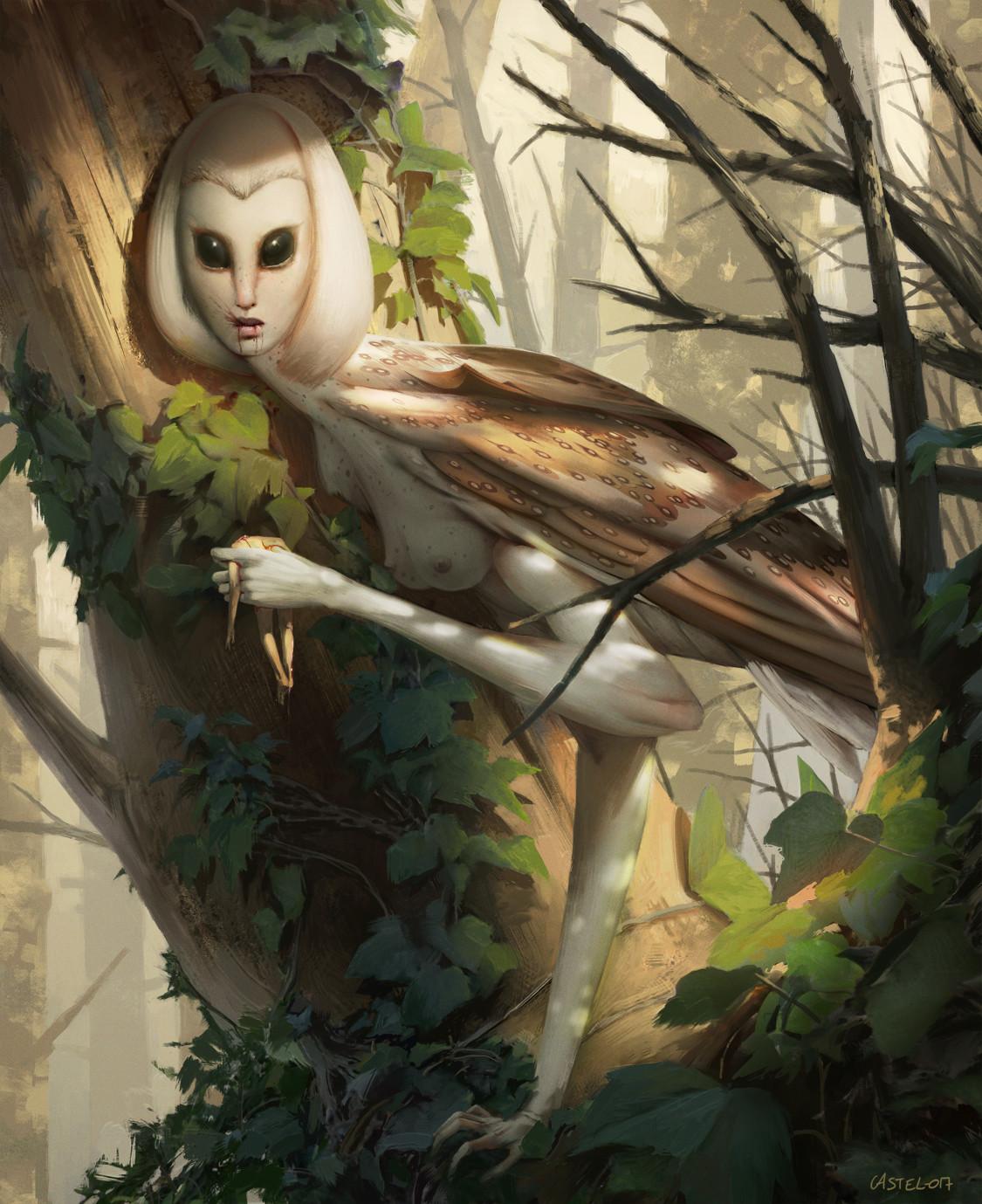 Quentin castel lady owl