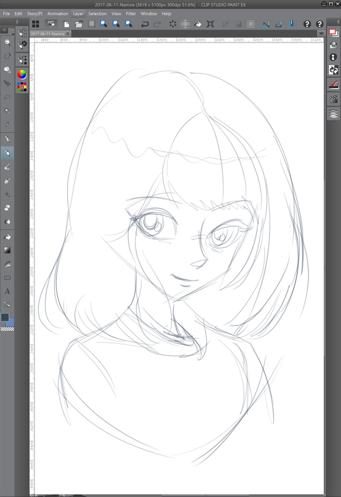 01 - The rough sketch