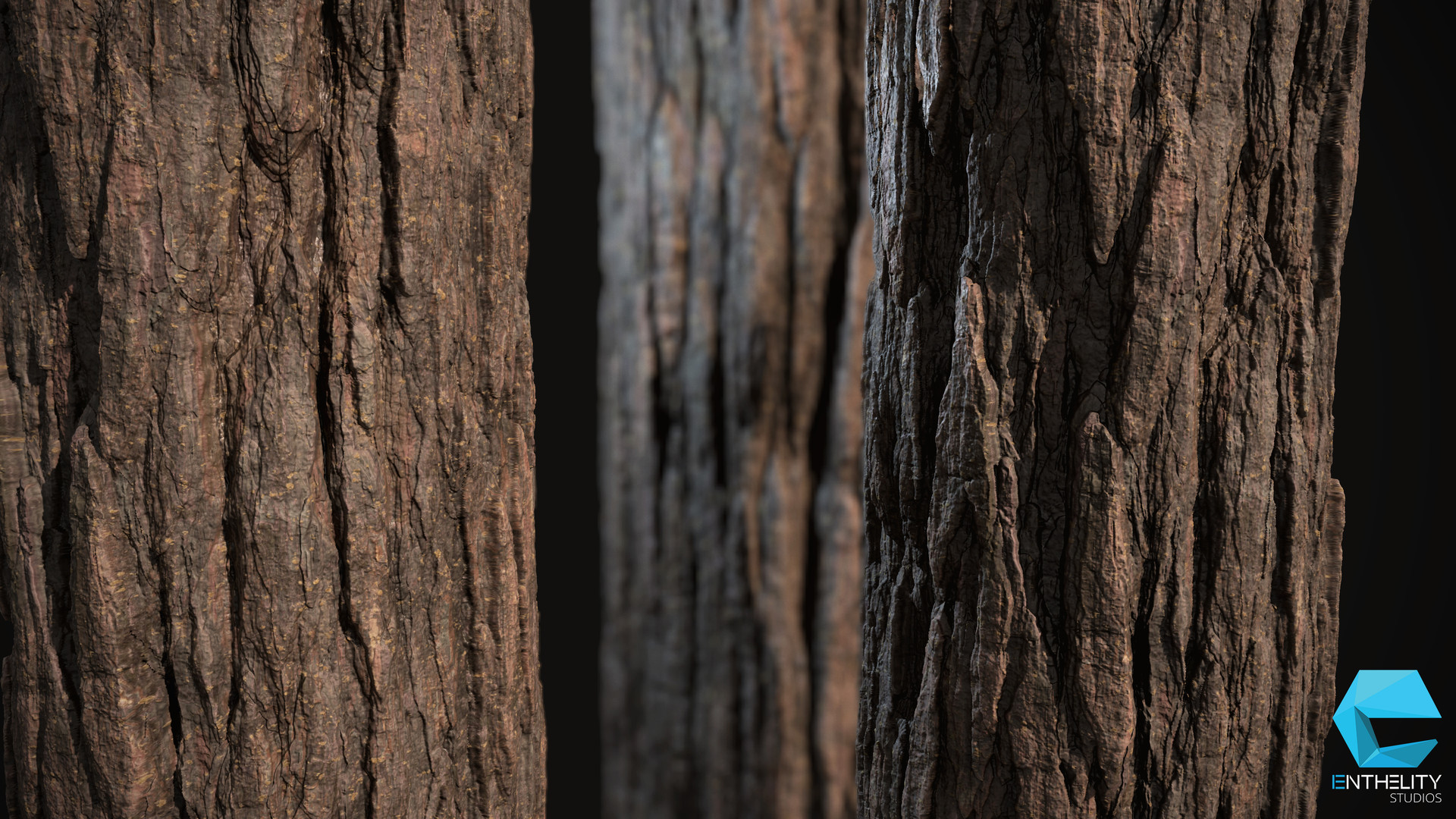 Artstation Pine Tree Bark Enrico Tammek 228 Nd