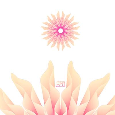 Agnieszka blaszczak kwiatek