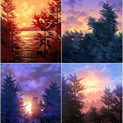 Emrullah cita pine trees