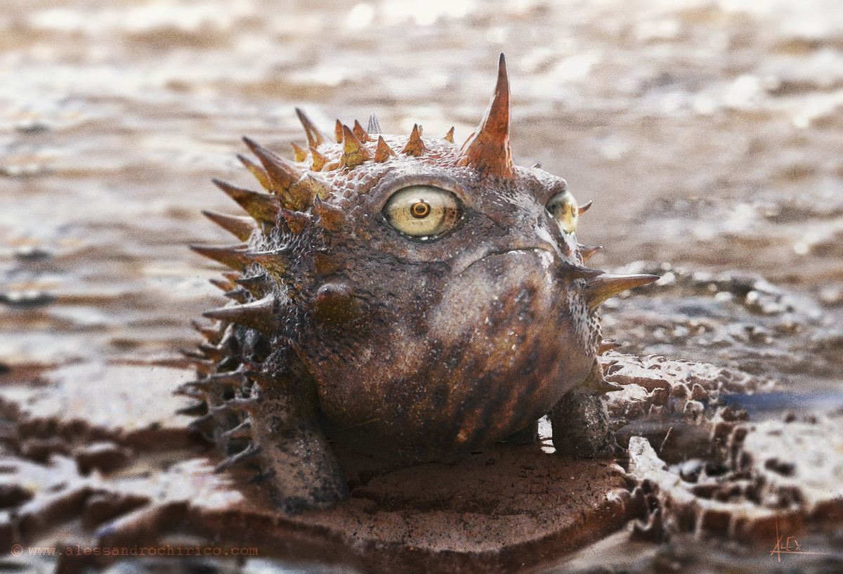 Spiky Toad