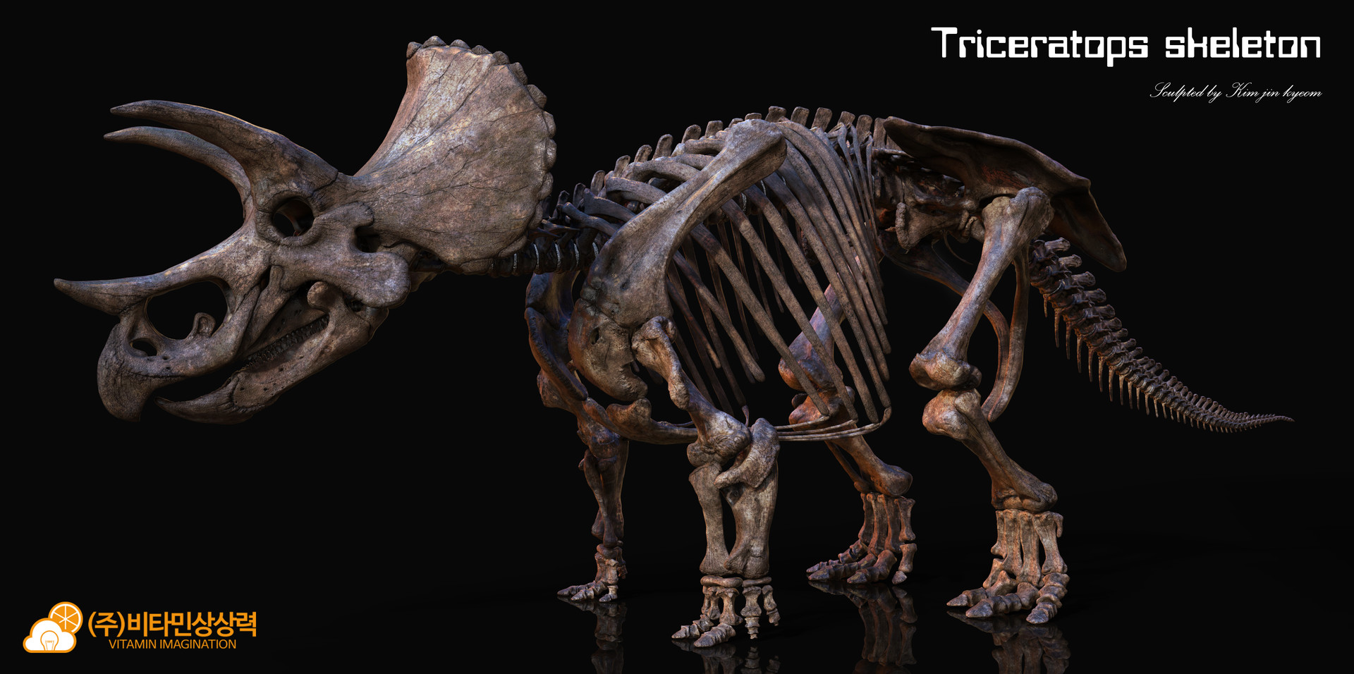 Vitamin imagination triceratops 2017 skeleton