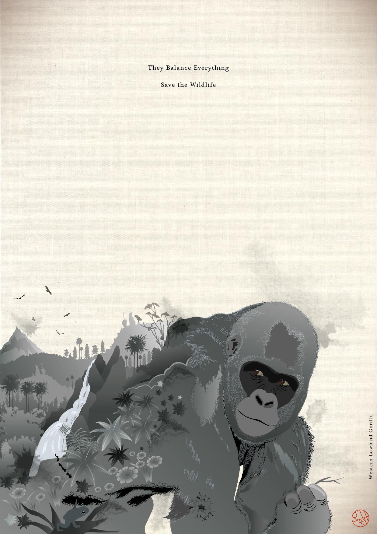 Rajesh sawant western lowland gorilla