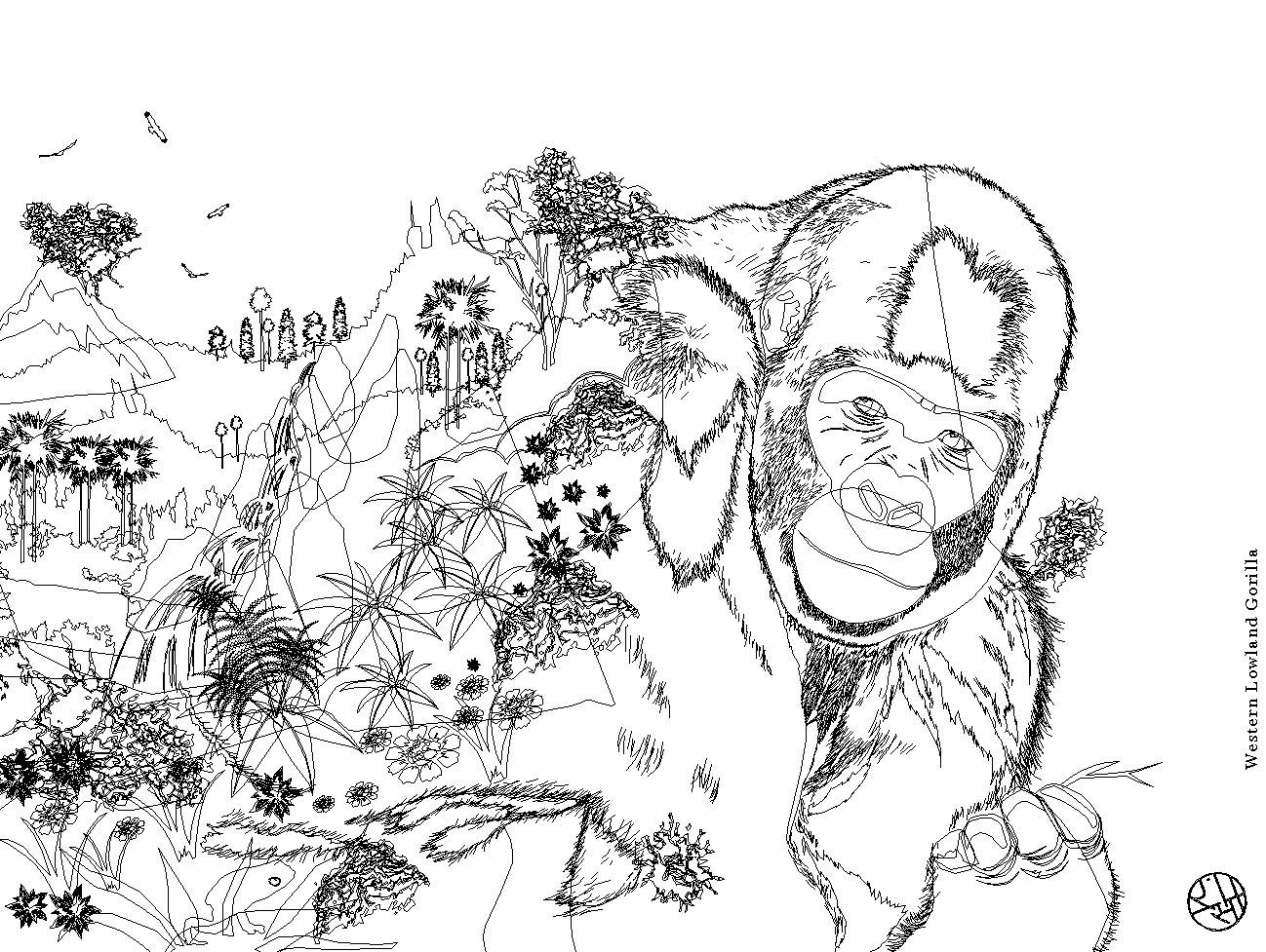 Rajesh sawant western lowland gorilla wireframe