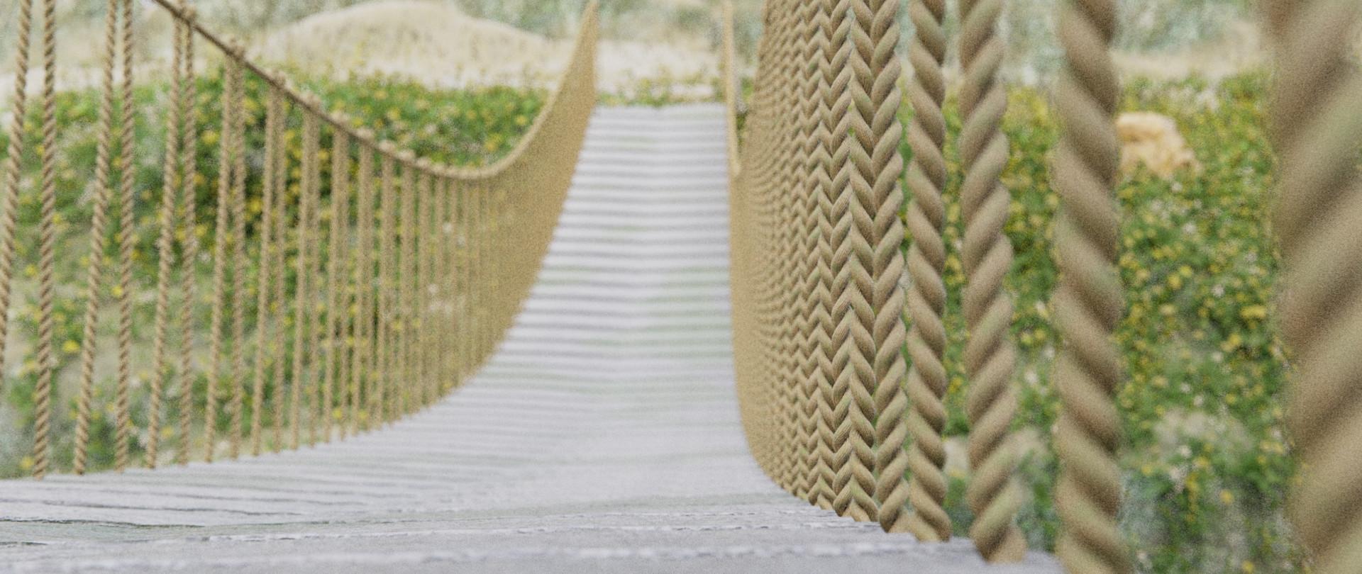 Lennart demes bridge rope detail 0050