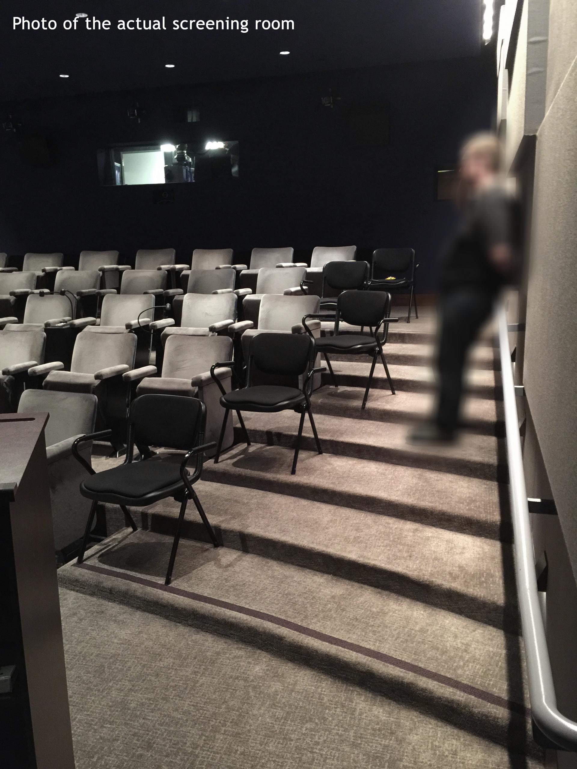 Actual Screening Room | Theater