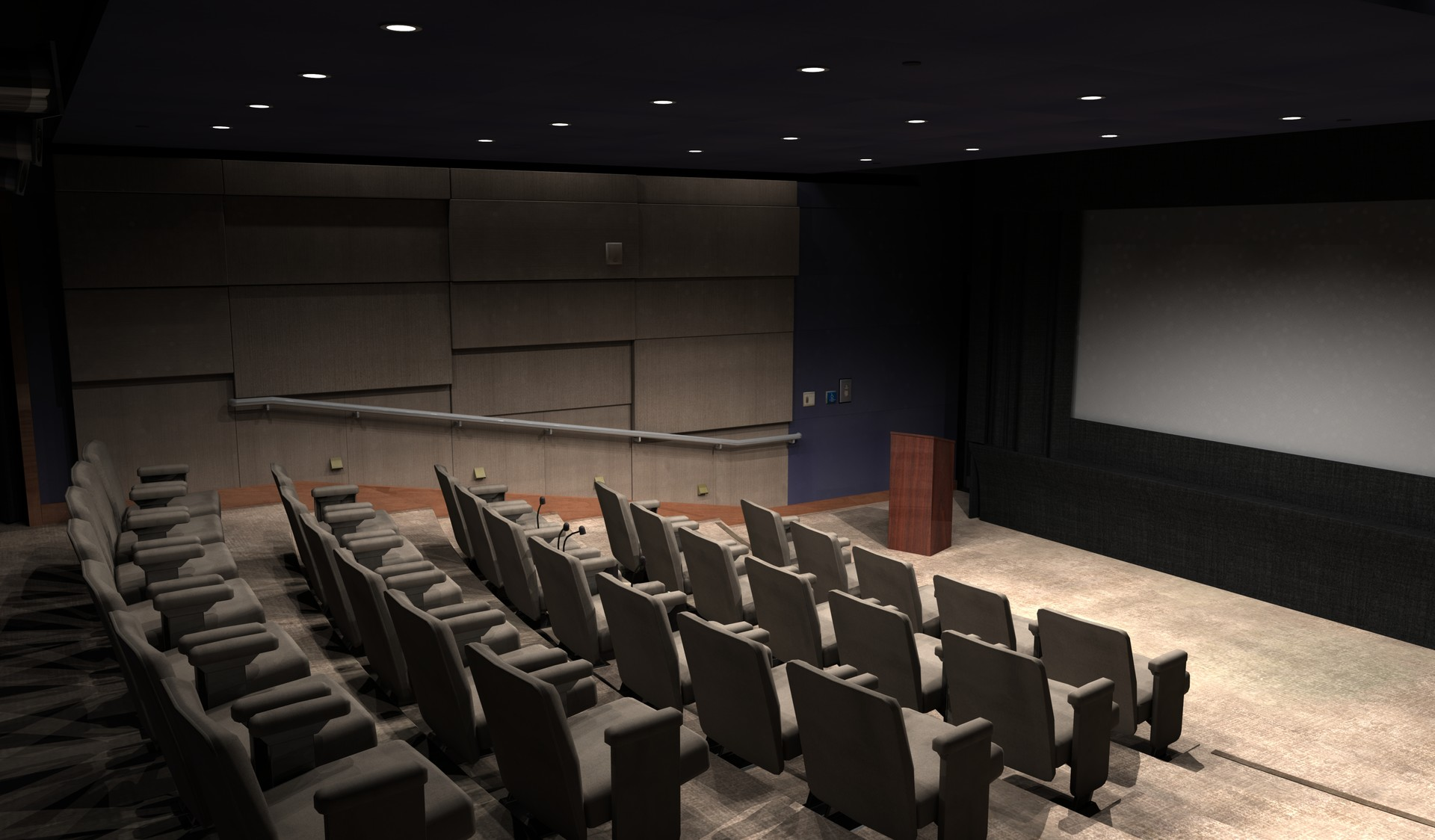 3D Screening Room | Theater (Lighting Condition with no film playing)
