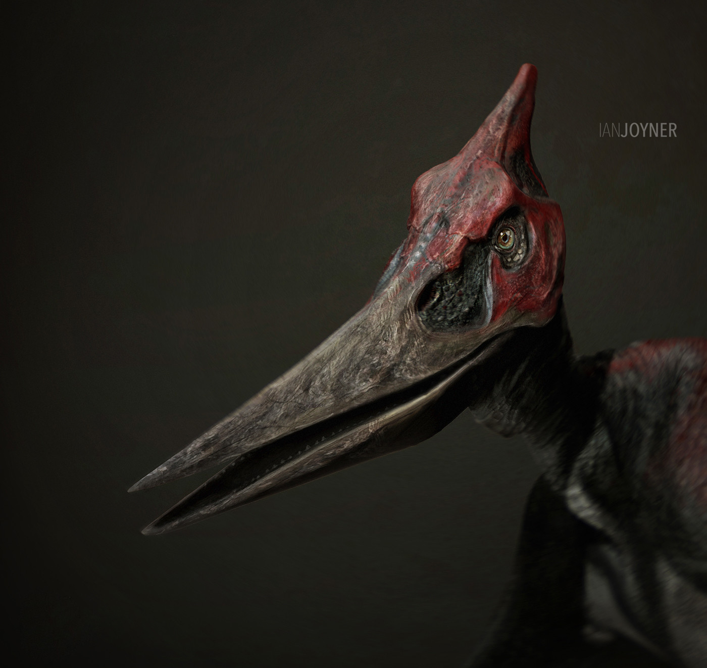 Head study for Pteranodon.
