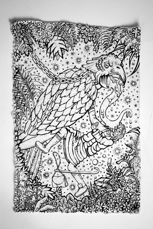 Agathe pitie combardus mortuis the parrot 2015 21cm29cm 2015